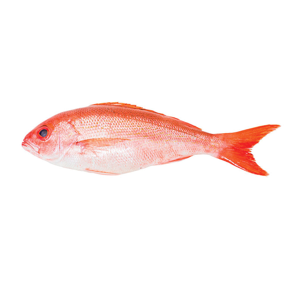 Red Snapper (Per Portions and Fillets)