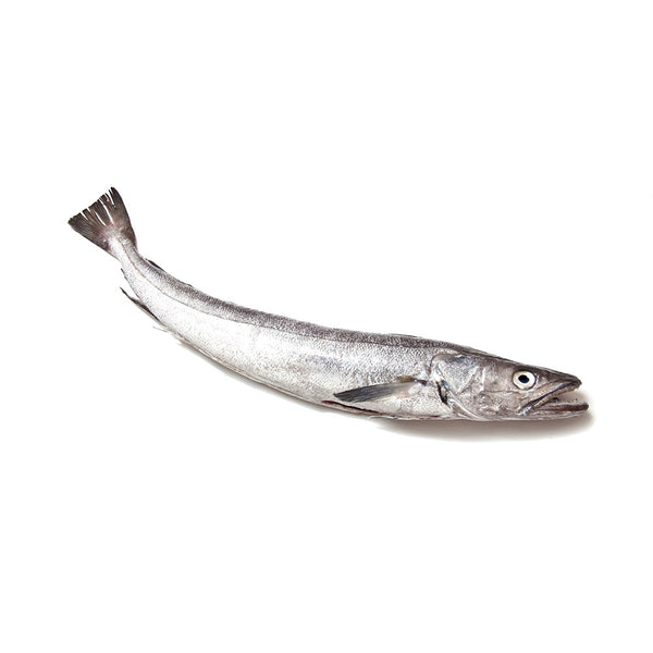 Hake (bone-in)
