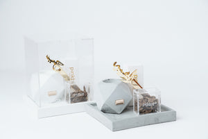 hex mubkhar and gold tongs  gift set
