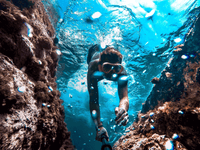 Underwater snorkeling swimming diving swimming on a reef