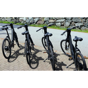AmericanElectric Electric Bike Genze E222 Ste-Thru Matte Black 350W - electric bike