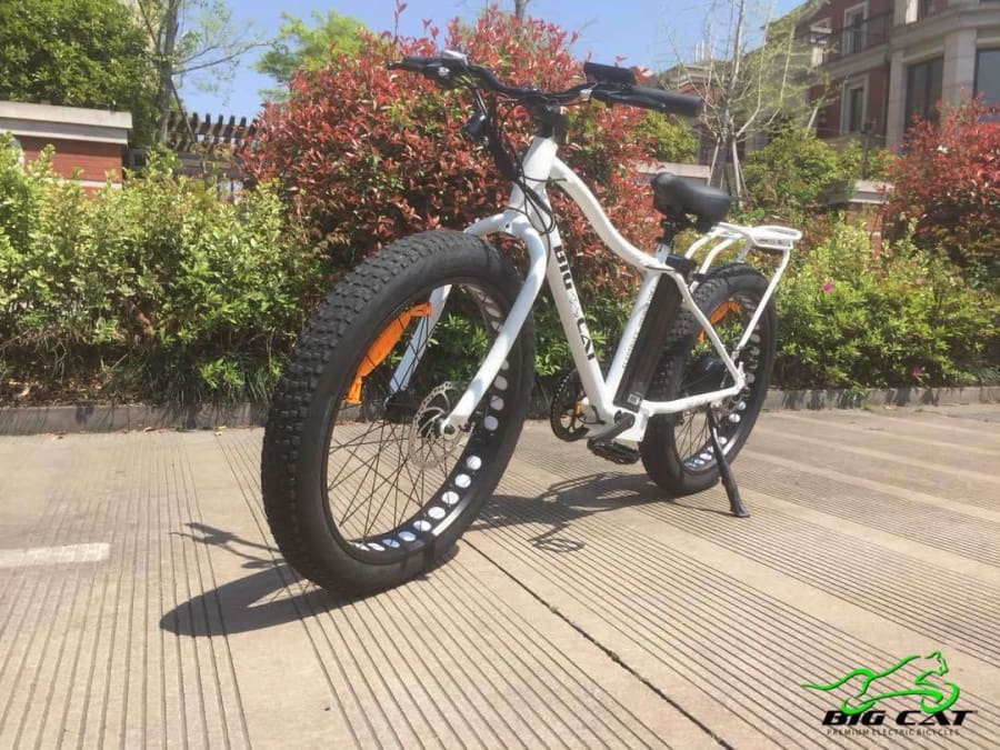 Fat Tire Electric Bike BIG CAT Fat Cat XL 500W (New 2019)