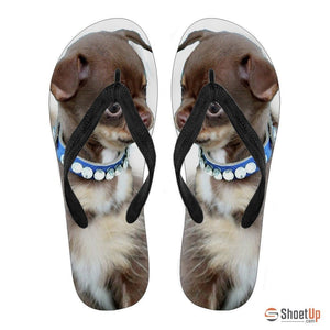 Chihuahua Puppy Flip Flops For Women-Free Shipping