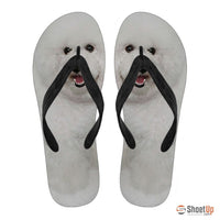 Bichon Flip Flops For Women-Free Shipping