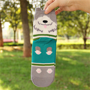 Autumn Cartoon Sock For Women