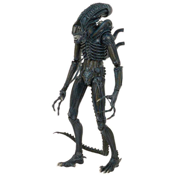 Aliens 1/4 Scale Action Figure – 1986 Warrior - Ou Neko