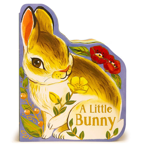 A Little Bunny Board Book