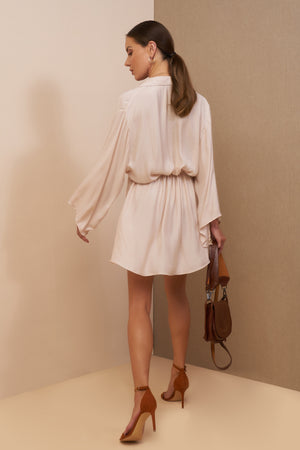 taylor shirt dress champagne back