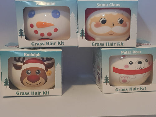 Christmas Grass Hair Kit