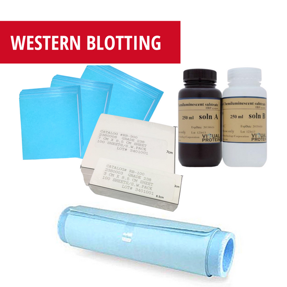 Western Blot Supplies - blotting paper, nitrocellulose membrane, and PVDF transfer membrane