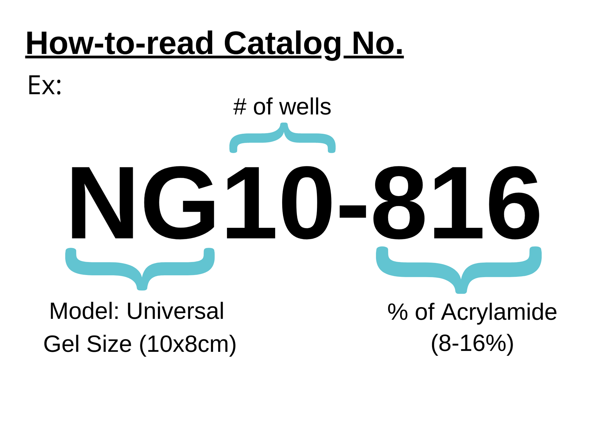 How to read catalog number