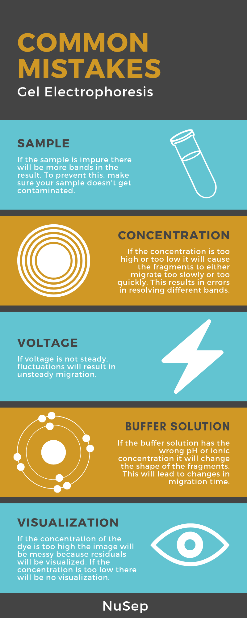 Inforgraphic on common mistakes in gel electrophoresis