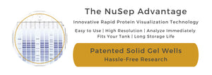 The NuSep Advantage for Easy to Use Tris-Glycine Precast Gels