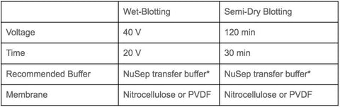 Western Blotting Protocol - compares semi-dry blotting and wet-blotting | NuSep