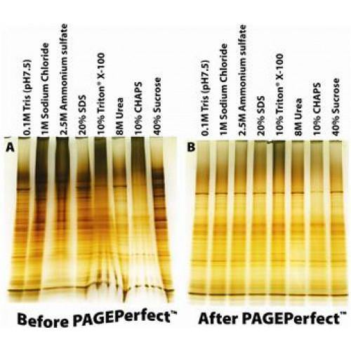 PAGE-Perfect