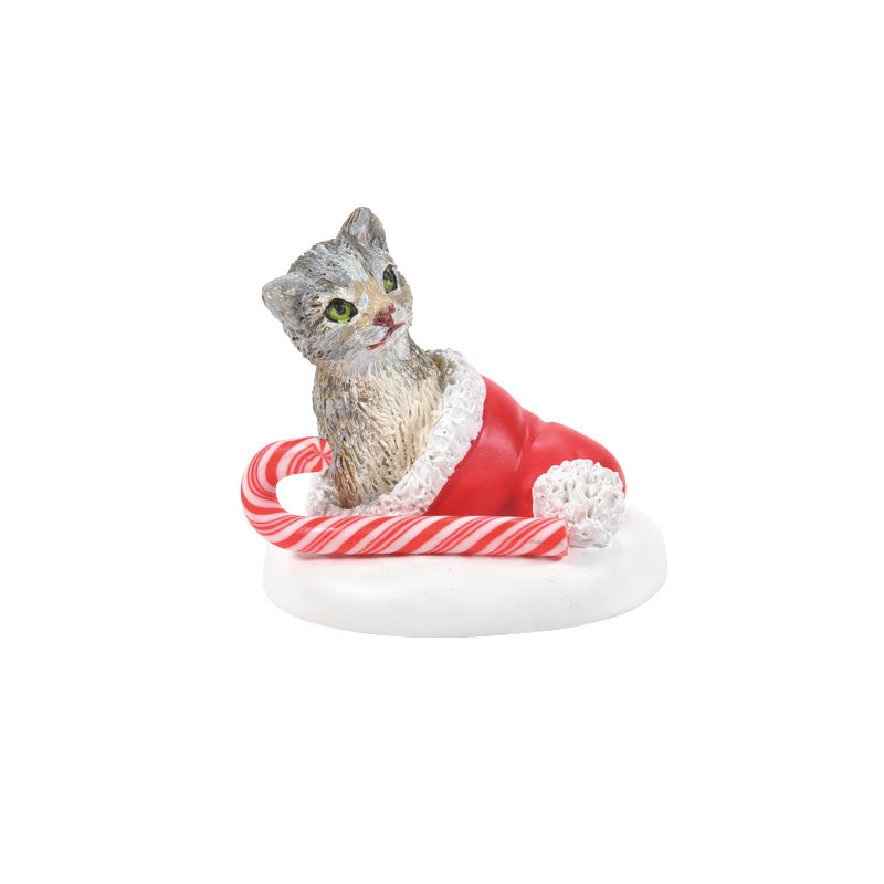 CANDY CANE KITTEN SURPRISE accessory
