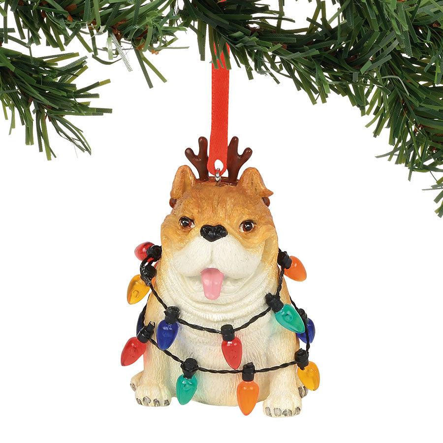 Bulldog in Lights Ornament