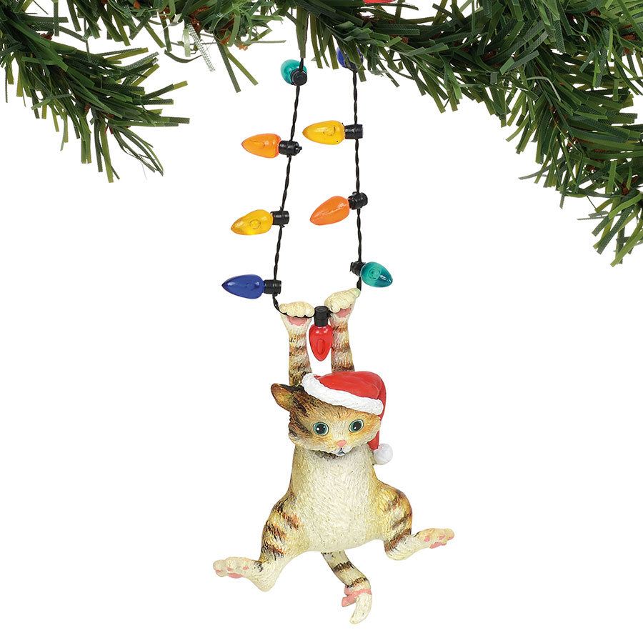 Cat hanging on Lights Ornament