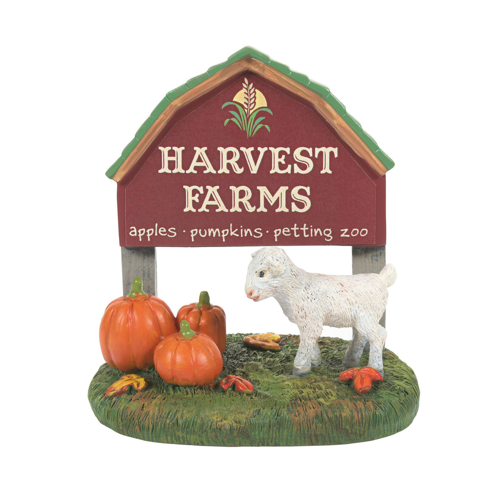 Harvest Farm Kid