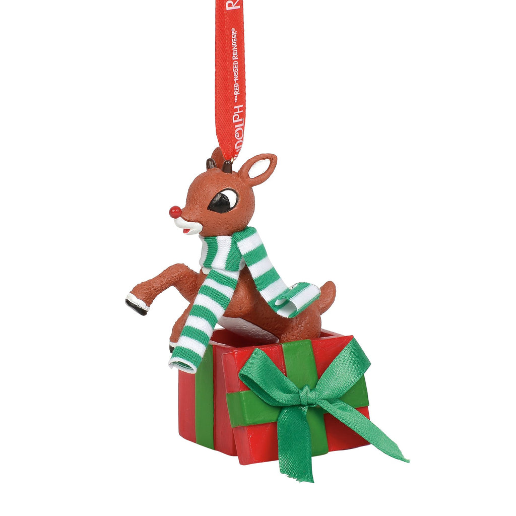 Rudolph Jumping out of Gift