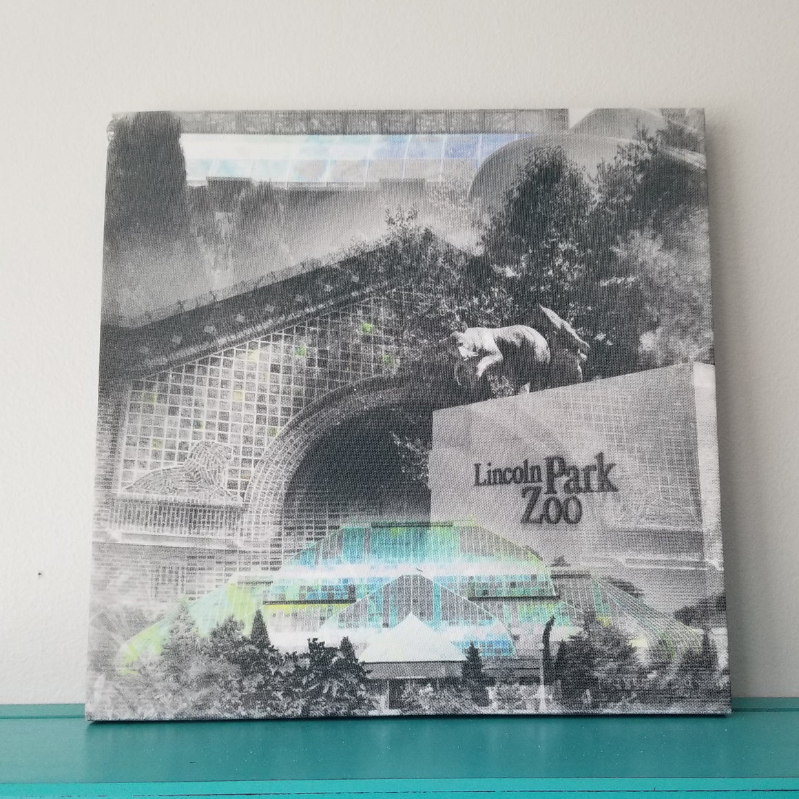 "Lincoln Park Zoo - Chicago 13"" Canvas Wall Art - Photo Collage"