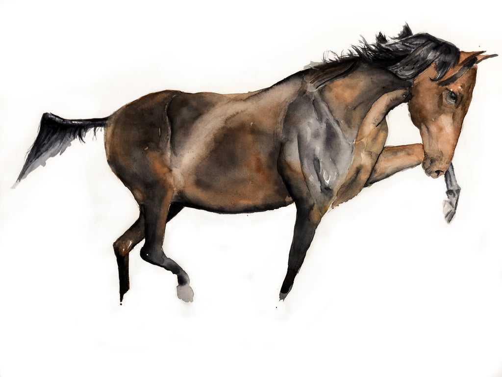 Horsing Painting, watercolor 22x16