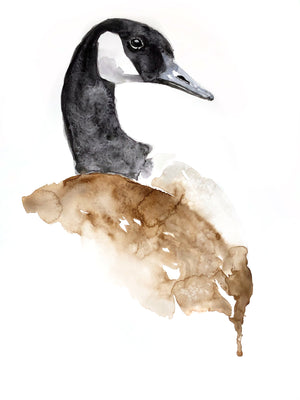 CANADIAN GOOSE - Print of my original Watercolour Painting
