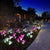 [US Stock] 2 Pack Solar Lily Flower Garden Decor Lights