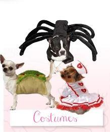 Costumes | Posh Pet Glamour Boutique