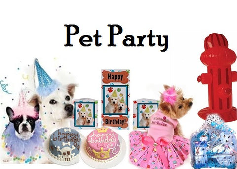 We Carry Luxury Accessories For Dogs And Catspet Jewelrypet Halloween Costumespet Carriers More