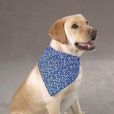 Aria Blue Ribbon Bone Bandana - Posh Pet Glamour Boutique