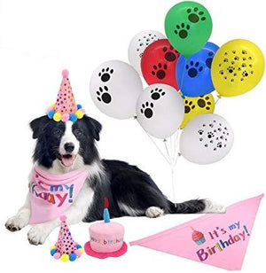Birthday Party Accessory Set - Dog Birthday Set