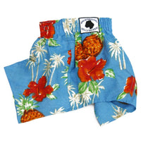 Belly Boxers - Lahaina - Posh Pet Glamour Boutique