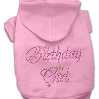 Birthday Girl Hoodie - Posh Pet Glamour Boutique