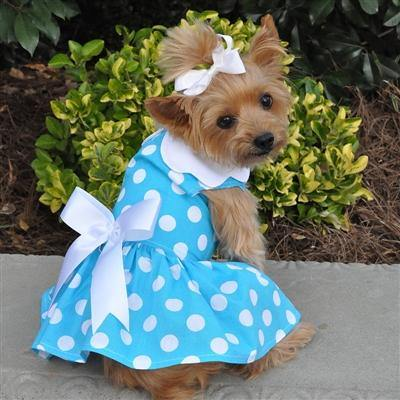 Blue Polka Dot Dress w/ Leash and D-Ring - Posh Pet Glamour Boutique
