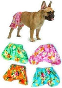 Board Shorts - Posh Pet Glamour Boutique