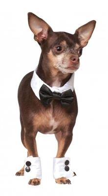 Bowtie and Cuff Set - Posh Pet Glamour Boutique