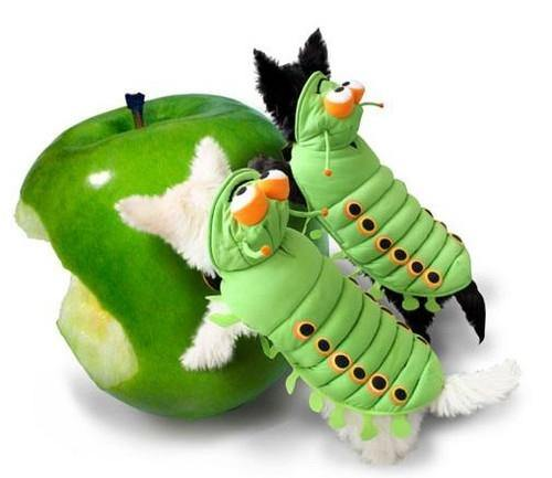 Caterpillar Costume - Posh Pet Glamour Boutique