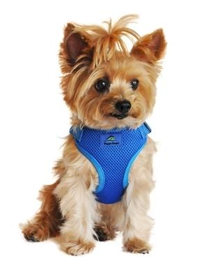 Cobalt Blue Fabric Wrap and Snap Choke Free Harness - Posh Pet Glamour Boutique
