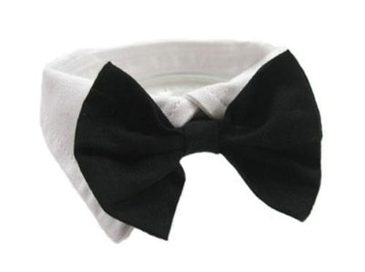 Collar and Bow Tie Set - Posh Pet Glamour Boutique