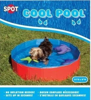 Ethical Cool Pool - Posh Pet Glamour Boutique