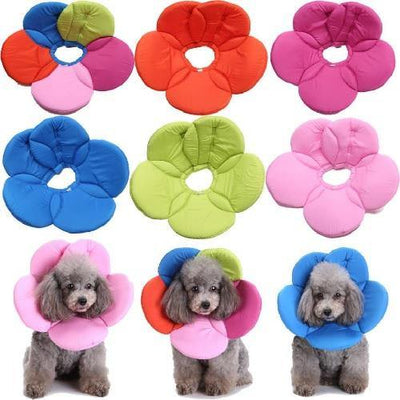 Flower E-Collar - Posh Pet Glamour Boutique