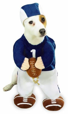 Football Fever Costume - Posh Pet Glamour Boutique