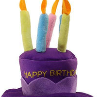 Happy Birthday Party Hat - Posh Pet Glamour Boutique