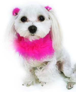Hot Pink Boa Collar - Posh Pet Glamour Boutique