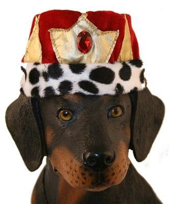 King Hat - Posh Pet Glamour Boutique
