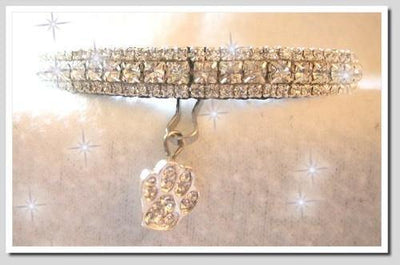 Lil Sparkle Paws Collar - Posh Pet Glamour Boutique
