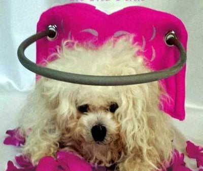 Muffin's Halo Pink Angel Wings - Posh Pet Glamour Boutique