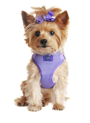 Paisley Purple Fabric Wrap and Snap Choke Free Harness - Posh Pet Glamour Boutique