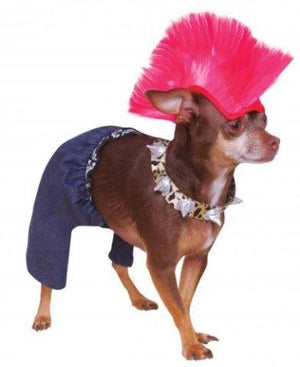 Punk Rocker Costume - Posh Pet Glamour Boutique